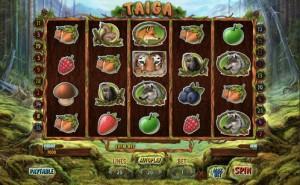 taiga-screen